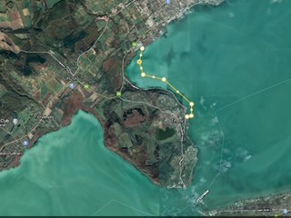 Jótékonysági evezés a Duna-ágért