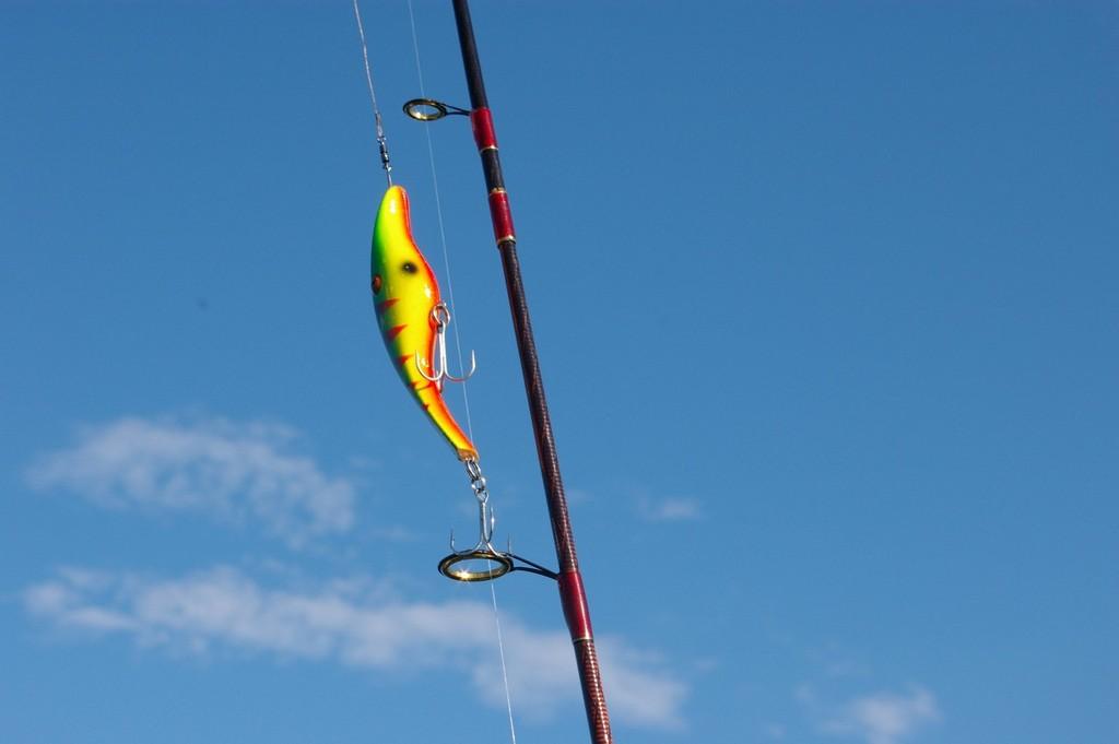 Milyen felszereléssel lehet pergetni a balin- és süllőtilalom idején?